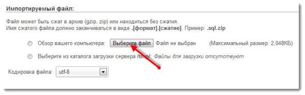 Выбор файла для импорта