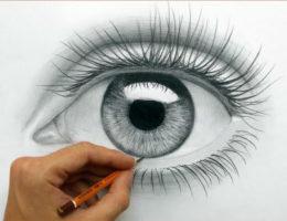 Профессиональные рисовалки онлайн